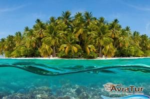 maldive-din-chisinau (2)