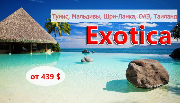 exotics-november